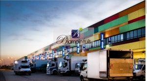 Site-internet-Blampin-photographie-reportage-marchés d'intérêt général-Rungis-Lyon-Corbas