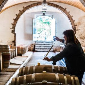 photographe-var-photographie-portrait-crau-domaine-viticole-mesclances